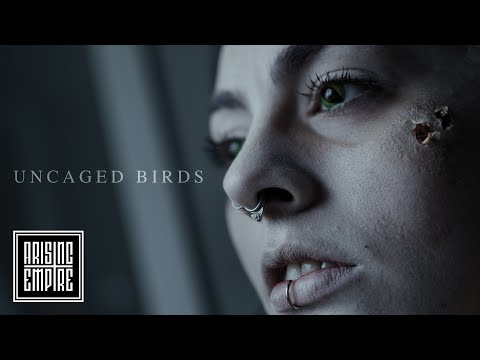 VENUES - Uncaged Birds (OFFICIAL VIDEO)